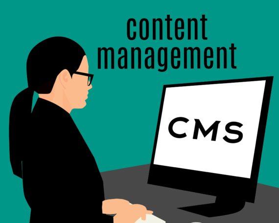 Was ist ein CMS? auf gemenet.de